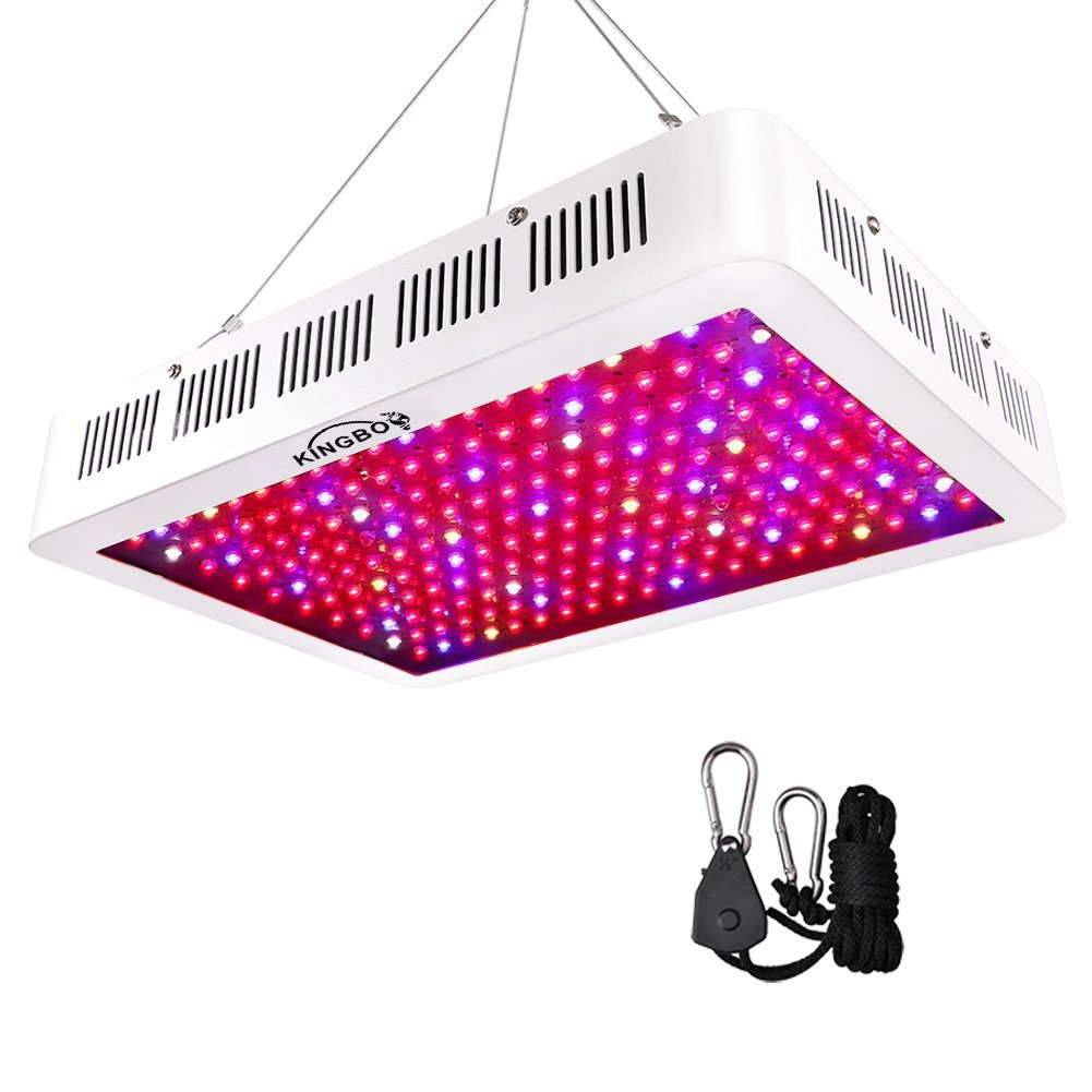 1000W LED Grow Light Double Chips Full Spectrum Grow Lamp Daisy Chain with Rope Hanger for Indoor Plants Greenhouse Hydroponic Plants (White) [Energy Class A+++] KINGBO LED