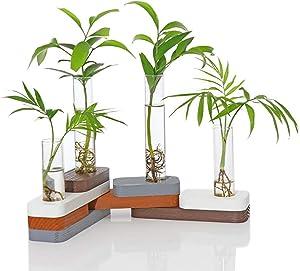 Ivolador Desktop Glass Planter Test Tube Vase with Building Blocks Transformation DIY Wooden Stand for Hydroponics Plants