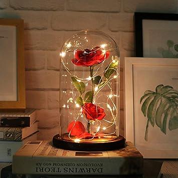 Kobwa Die Schone Und Das Biest Verzaubert Rose Eleganten Glaskuppel