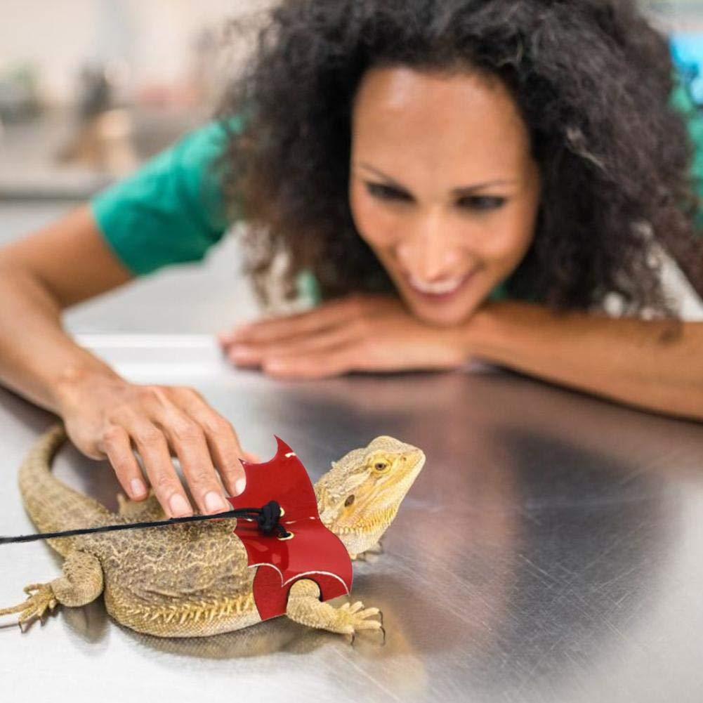 Nrkin Cuerda de Tracci/ón de Arn/és de Lagarto Cintur/ón de Tracci/ón de Salida de Reptil Charming