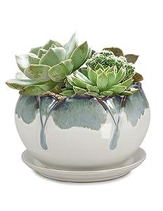 Dahlia Rustic Drip Glazed Ceramic Succulent Pot