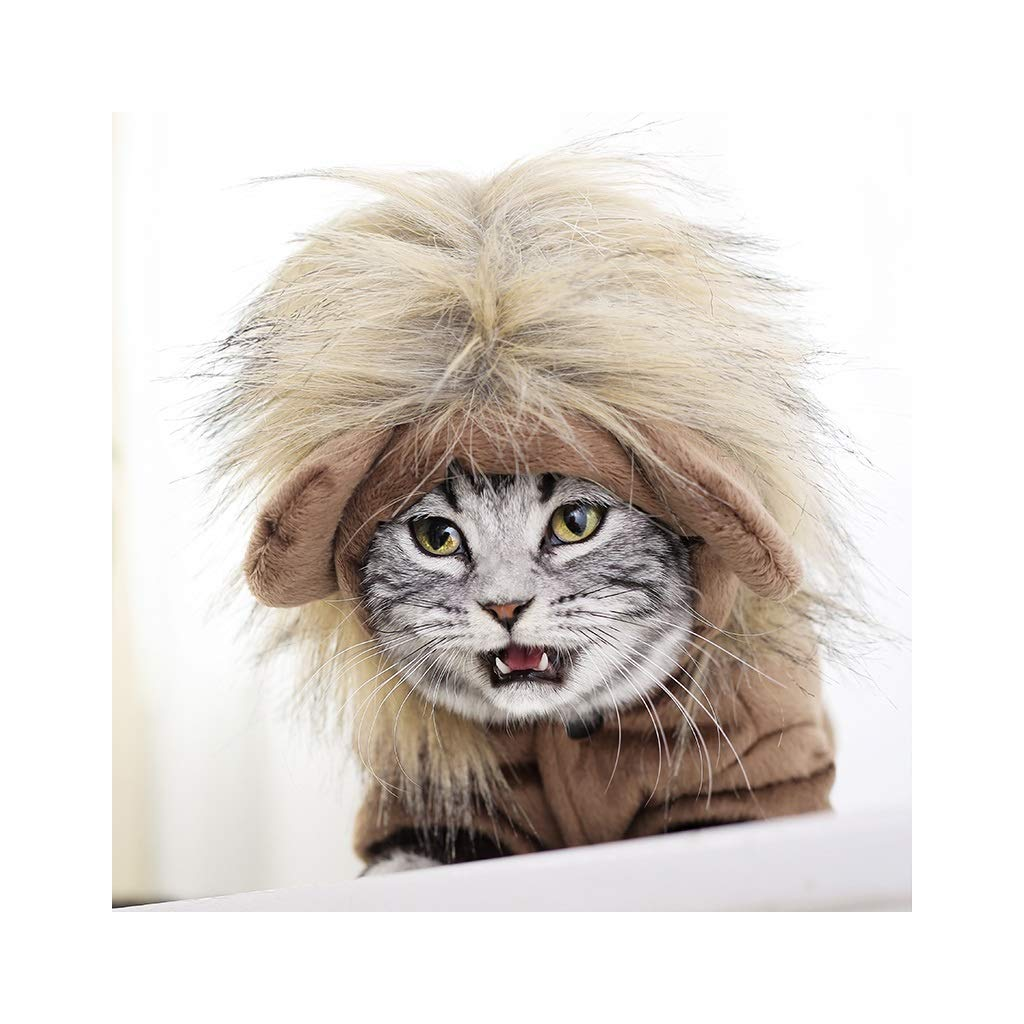 M JXLBB Clothes for Pets Cat Hood Dog Clothes Cute Lion Small Ear Hat Teddy Female Garfield Pet Wig Decoration (Size   M)