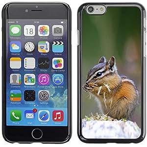 Be Good Phone Accessory // Dura Cáscara cubierta Protectora Caso Carcasa Funda de Protección para Apple Iphone 6 Plus 5.5 // Cute Chipmunk Squirrel
