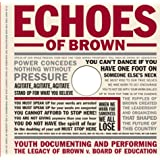 Echoes of Brown: Youth Documenting and Performing the Legacy of Brown V. Board of Education with DVD (Teaching for Social Justice Series)