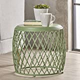 Brassel Indoor 19 Inch Diameter Lattice Matte Green Iron Side Table