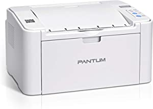 Wireless Black and White Laser Printer with Mobile Printing for Home Use and School Student, Pantum P2502W