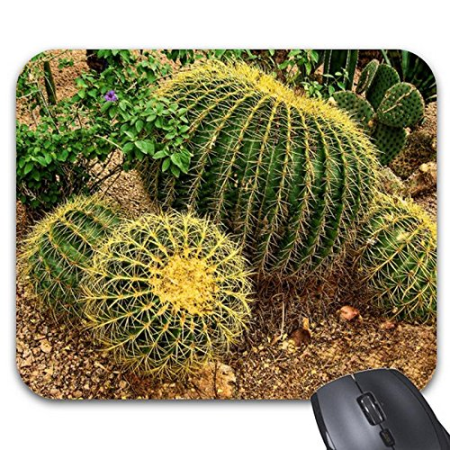 Goodaily Mousepad Barrel Cactus Mouse Mat- Stylish Office Accessory (Cactus Is What Barrel A)