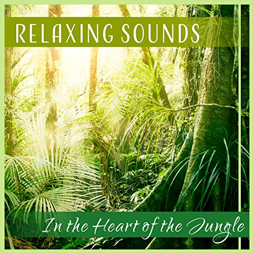 - In the Heart of the Jungle: Relaxing Sounds - African Wildlife, Tropical Forest, Exotic Paradise, the Kingdom of Nature