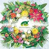Ryu - We're So Happy [Japan CD] QWCE-378 by Ryu