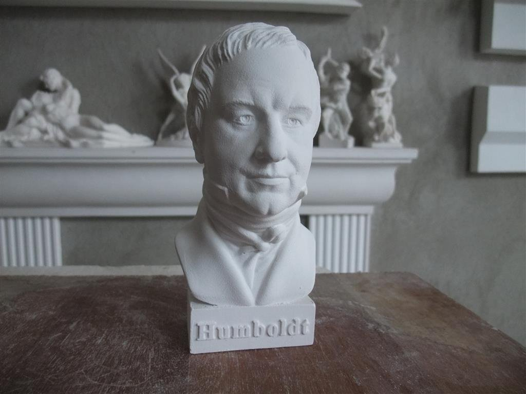 Alexander gipsnich B/üste Humboldt