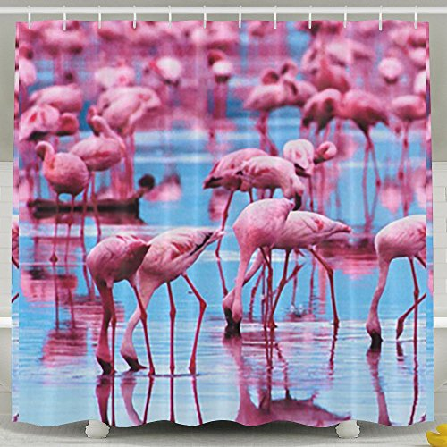 BINGO FLAG Funny Fabric Shower Curtain Pink Blue Flamingos Waterproof Bathroom Decor With Hooks 60 X 72 Inch by BINGO FLAG