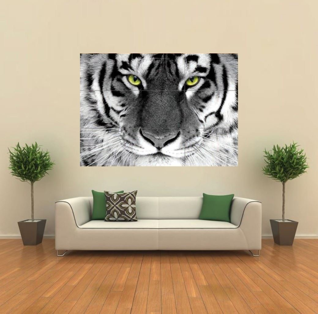 amazon com white tiger arty eye giant animal poster print x1432 amazon com white tiger arty eye giant animal poster print x1432 posters prints