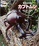 自然なぜなに?DVD図鑑1 昆虫の王者 カブトムシ