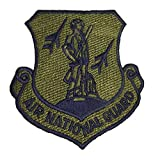 USAF Air National Guard Patch - Subdued