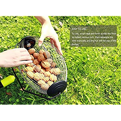 ORIENTOOLS Nut Gatherer, Garden Rolling Nut Harvester, Picks up Balls, Pecans, Crab Apples, Acorns, Hickory Nuts & Other Objects 3/4