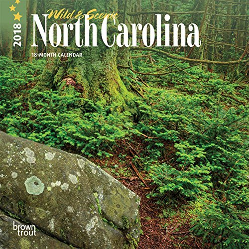North Carolina, Wild & Scenic 2018 7 x 7 Inch Monthly Mini Wall Calendar, USA United States of America Southeast State Nature (North Carolina Tar Heels Landscape)