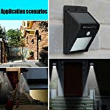 Solar Powered Security Floodlights- Set of