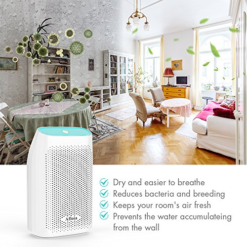 5 Best Dehumidifier for Asthma, Allergies and COPD Sufferers
