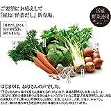 茅乃舎 減塩野菜だし (8g×22袋入) (2個セット【茅乃舎オリジナル教本付き】)