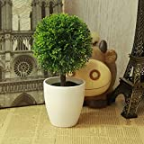 LANJIE Simulation Of Plant Flowers Bonsai Tree Ornaments Potted Plants Fake Tree Grass Ball Plastic Flower Table Decoration Fruit Green
