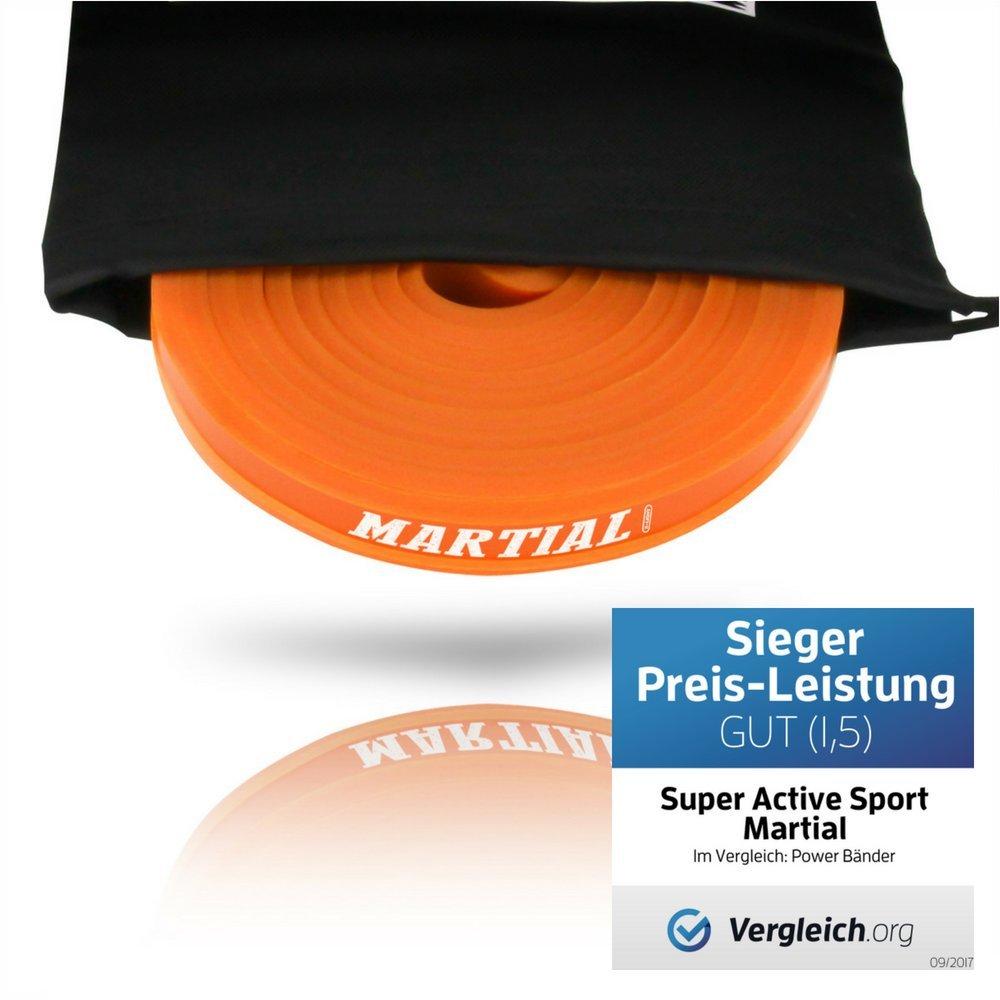 SASEIL 208 cm de resistencia y entrenamiento de potencia 5-80 KG superactivas para el cuerpo completo 5er Set Correas de resistencia deportivas
