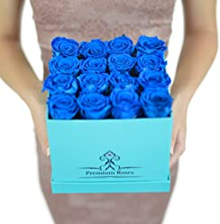 Valentine's Day Collections| Roses with Longevity (Medium, Blue)