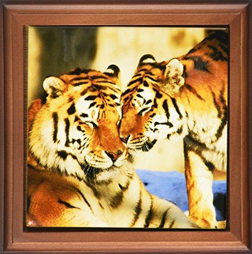 3dRose ft_216283_1 Image of Tigers Framed Tile, 8