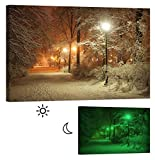 LightFairy Glow in the Dark Canvas Painting - Stretched and Framed Giclee Wall Art Print - Scenery Landscape Outdoor Winter In The Park - Master Bedroom Living Room Decor - 6 Hours Glow - 46 x 32 inch