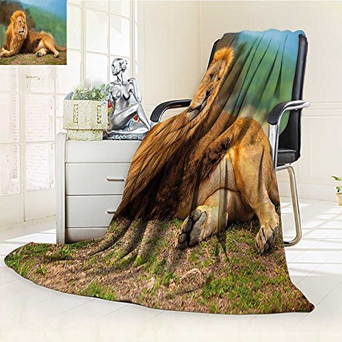 AmaPark Super Soft Lightweight Blanket Africa A Lion Lying and Resting on the Top of the Print Oversized Travel Throw Cover Blanket by AmaPark
