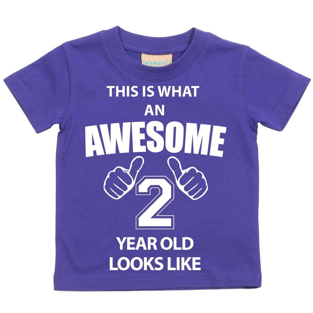 f917962fcafa8 This is What An Awesome 2 Year Old Looks Like Purple Tshirt 2nd ...