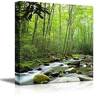 Canvas Prints Wall Art - Beautiful Scenery/Landscape Stream Going Through The Jungle | Modern Wall Decor/Home Decoration Stretched Gallery Canvas Wrap Giclee Print & Ready to Hang - 16