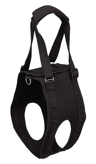 Andador, XL, negro: Amazon.es: Productos para mascotas