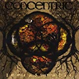 Immeasurable by Concentric (2013-05-04)