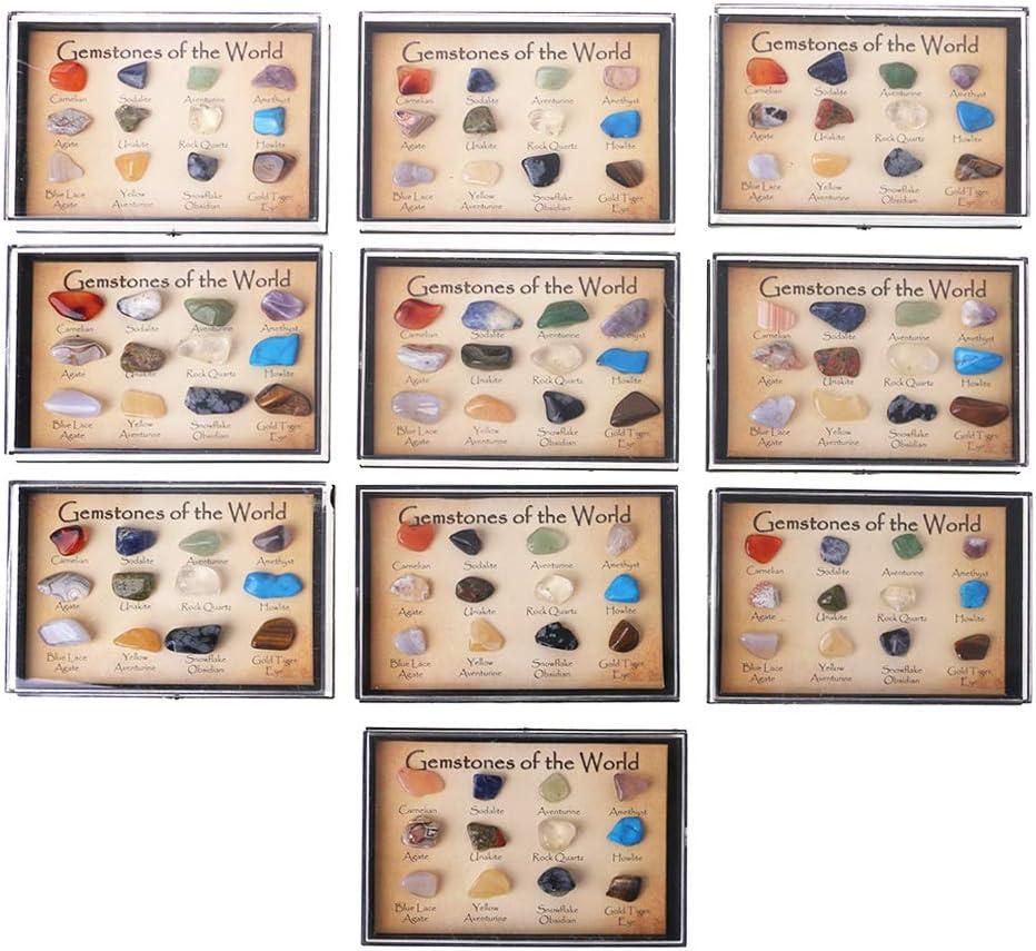 SimpleLife El Kit de muestras de Mineral Mineral Natural Caja Contiene 12 Piedras Preciosas: los Mejores Materiales de enseñanza geológica para Estudiantes.