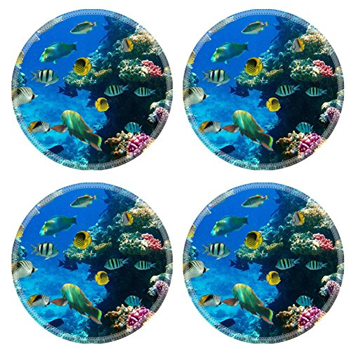 Liili Round Coasters Non-Slip Natural Rubber Desk Pads Photo of a coral colony on a reef Egypt IMAGE ID 11317196 -