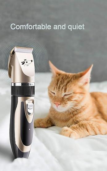 Hiistandd - Máquina de cortar pelo para perros y gatos: Amazon.es ...
