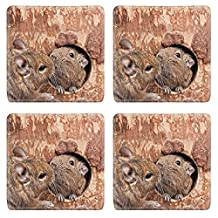 Liili Natural Rubber Square Coasters IMAGE ID: 27836518 pair of degus in love kiss living in a hollow in a tree trunk