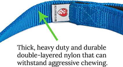 Medium and Large Dogs Hiking /& Training Canine 1 Inch Wide Best for Walking Blue, 2x Layer PetsLovers Durable Dog Leash Pet Lead 6 Feet Long