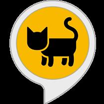 Curiosidades sobre los gatos.