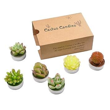 Amazon.com: YanSheng 6 velas de té de cactus, hechas a mano ...
