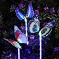YUNLIGHTS Solar Garden Lights Outdoor Garden Stake Lights Multi-color Changing LED Solar Lights with Purple LED Light Stake for Garden Patio Backyard Decoration
