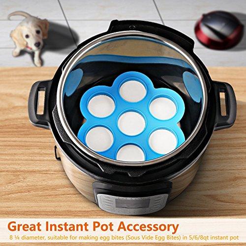 2 Pack Blue Egg Instant Pot Accessories Fits Instapot 5, 6, 8 Freezer Accessory, Sous Vide Egg