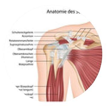 my-puzzle-design Mousepad Anatomie der Schulter: Amazon.de: Elektronik