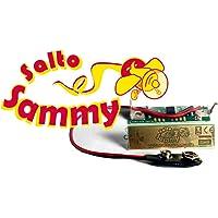 Salto Sammy - Tuning für Looping Louie