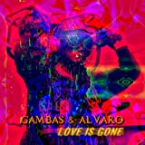 Love Is Gone (Dj Bonito & Sebastian Valmont Remix)