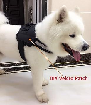 Amazon.com : Jasonwell No Pull Premium Durable Reflective Dog Vest