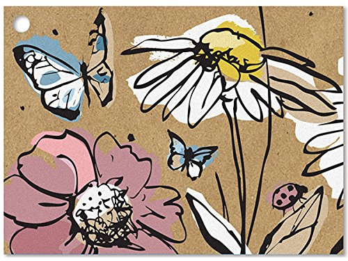 Wildflower Meadow Gift Cards (6 Pack ) 3-3/4x2-3/4'' by Nas
