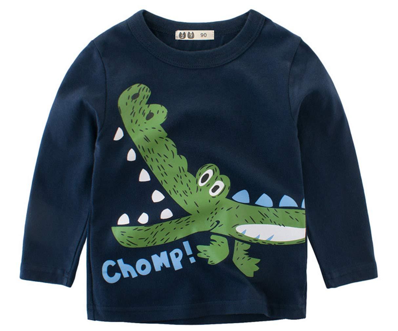 Socluer Garçon T-Shirt Coton à Manches Longues Dragon Top Sweat-Shirt Merveilleux Cadeaux Les Enfants de 2 à 10 Ans