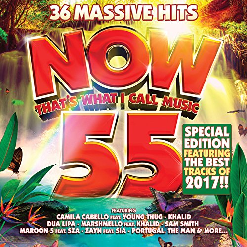 Music : Now That's What I Call Music 55 (2CD) + Best Of 2017!