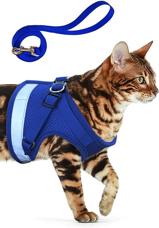 AEITPET Arnes Gato, Arnes para Gatos, Correa arnés arnes Gato pequeño Cuerda Chaleco Ajustable Respirante Arnés para Gatos y Correa Chaleco Suave y Transpirable para Mascotas pequeñas (XS, Azul): Amazon.es: Productos para